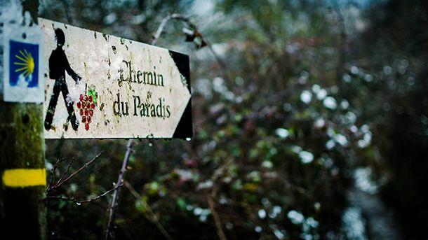 Defi13-Chemin du Paradis-NelsonMutheu